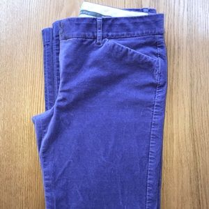 Express Editor pants velvety lavender 6
